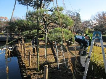 20141206雪吊り作業 (5)