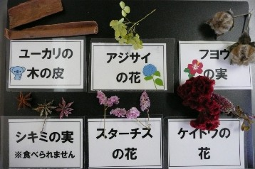 リース材料 (4)