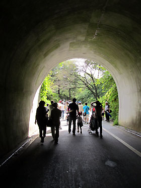 tunnel110917.jpg