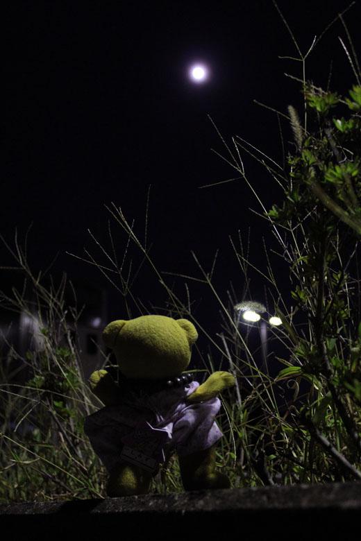 十三夜の月を見上げる 111009
