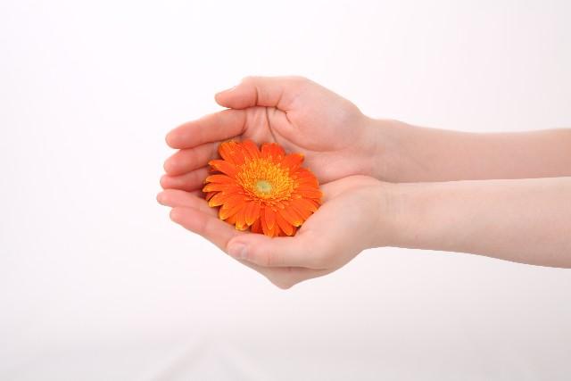 Flowerhands.jpg