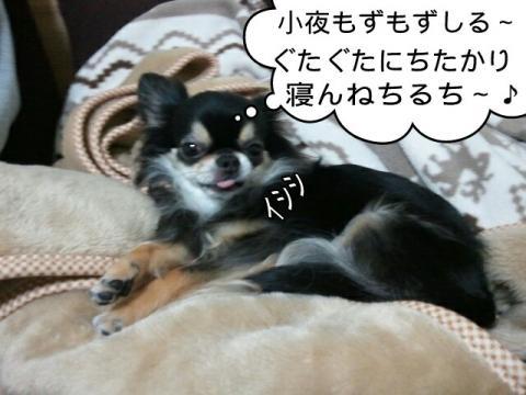 moblog_94d440e0.jpg