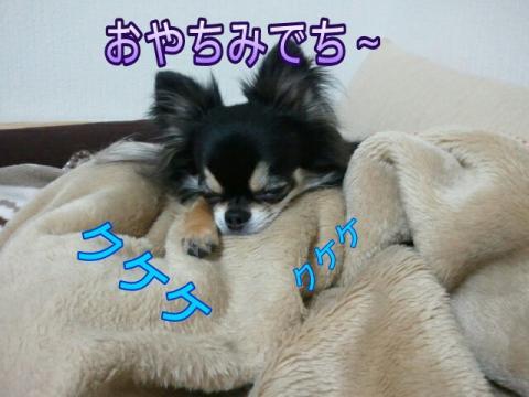 moblog_bc872fe4.jpg