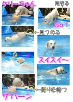 コピー ~ ka-2-9