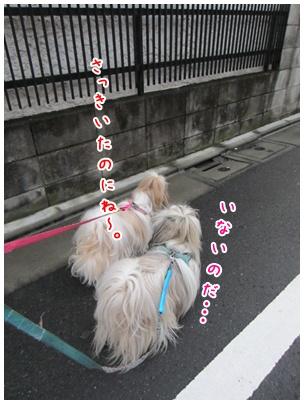 2011-09-02-05.jpg