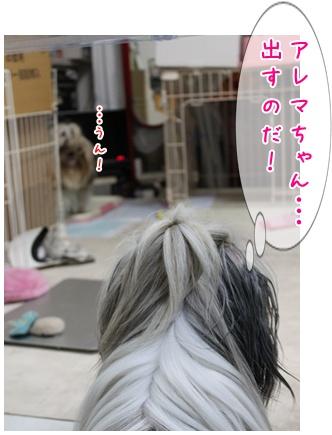 2011-09-03-01.jpg