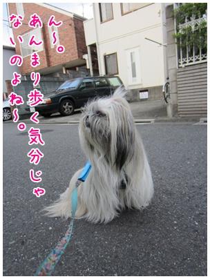 2011-09-03-09.jpg