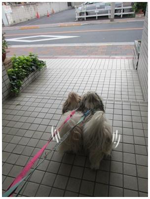2011-09-04-01.jpg