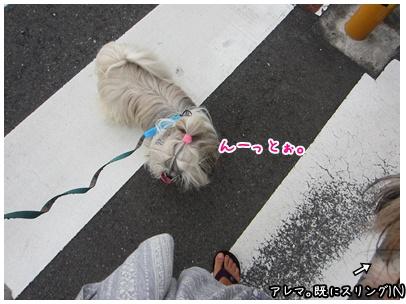 2011-09-04-04.jpg