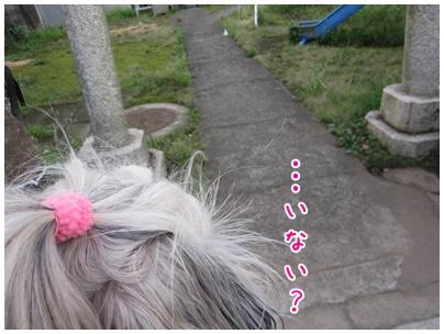 2011-09-04-06.jpg
