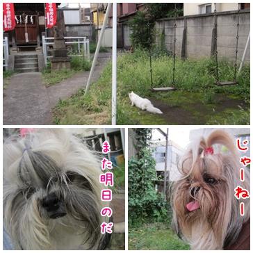 2011-09-04-12.jpg