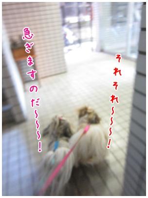 2011-09-07-03.jpg