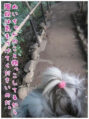2011-09-07-12.jpg
