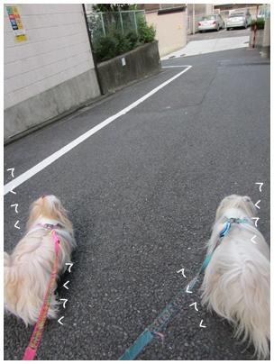2011-09-09-01.jpg