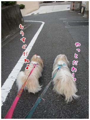 2011-09-09-02.jpg