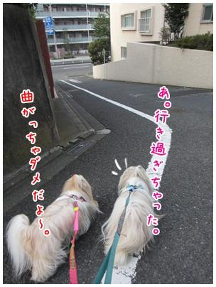 2011-09-09-03.jpg