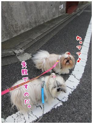 2011-09-09-04.jpg