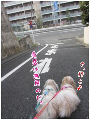 2011-09-09-09.jpg