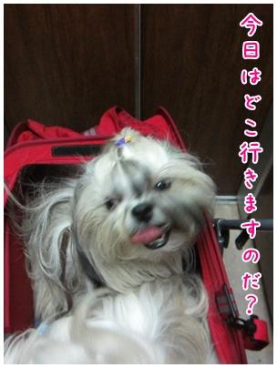 2011-09-12-01.jpg