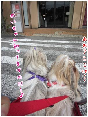 2011-09-12-03.jpg