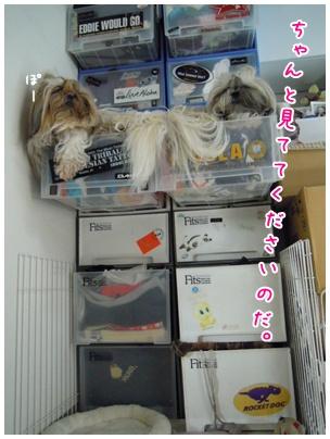 2011-09-14-06.jpg