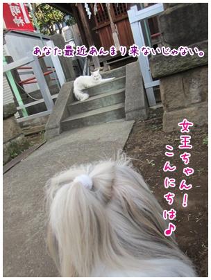 2011-09-16-01.jpg