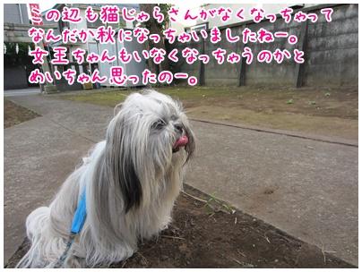 2011-09-16-04.jpg