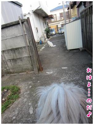 2011-09-17-02.jpg