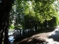 Colchester Parkへの道