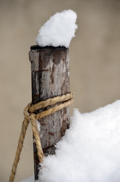 雪慕情-2