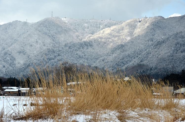 今日の雪景色-2