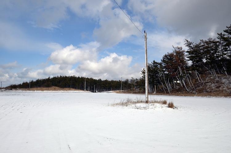 今日の雪景色Ⅱ-3