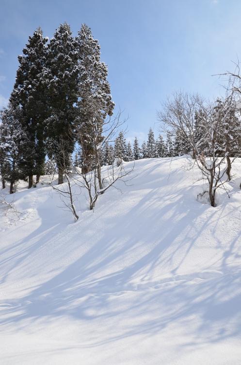 雪のしるし-1