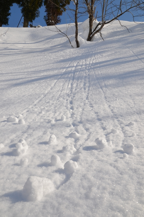 雪のしるし-2