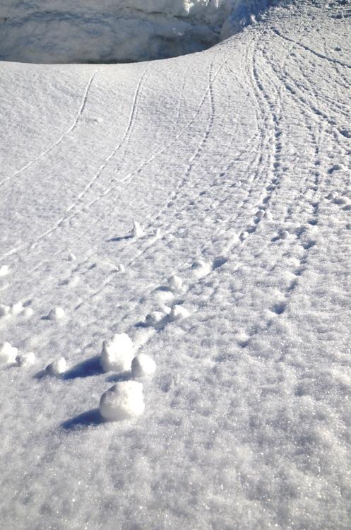 雪のしるし-3