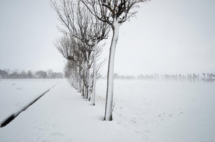 雪のち晴れ-1