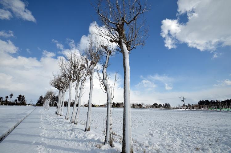 雪のち晴れ-2