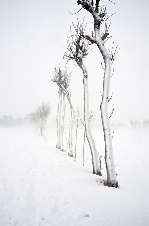 雪のち晴れ-3