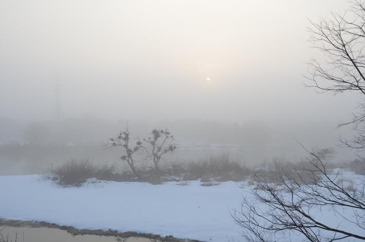 霧の朝-1