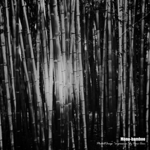 mono bamboo