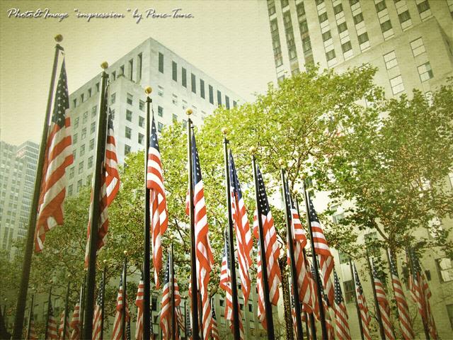 NY FLAGS