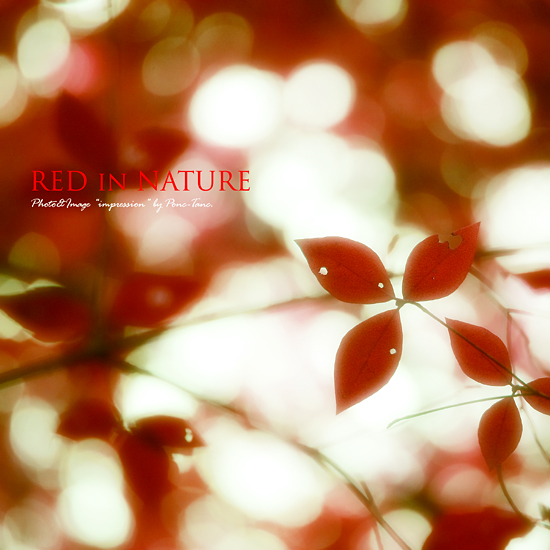 red in nature