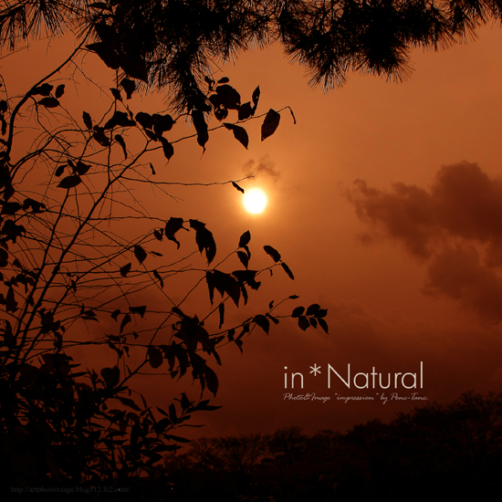 in natural 05