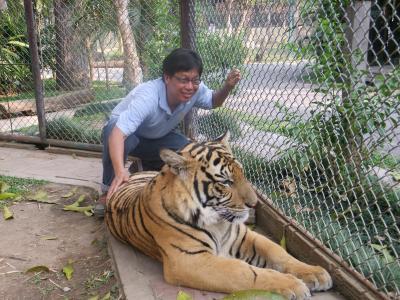 tiger0.jpg