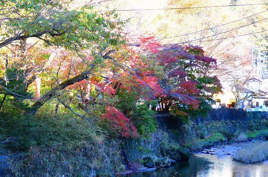 袋田の滝 008