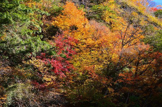袋田の滝 032