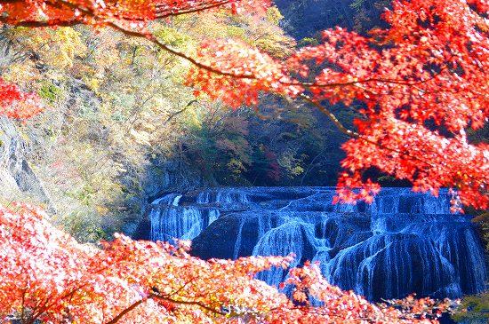 袋田の滝 041