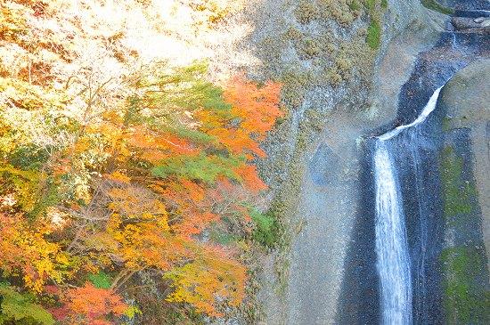 袋田の滝 053
