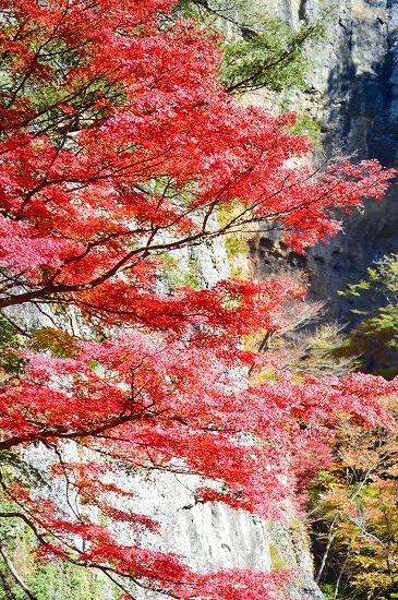 袋田の滝 059