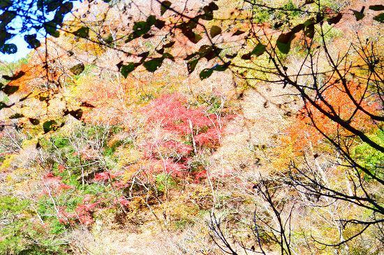 袋田の滝 086